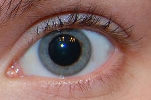 Pupillen vergrößerte Katzensprache: Was